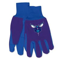 Picture of Charlotte Hornets Adult Two Tone Gloves
