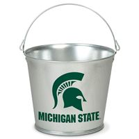Picture for category Michigan State University